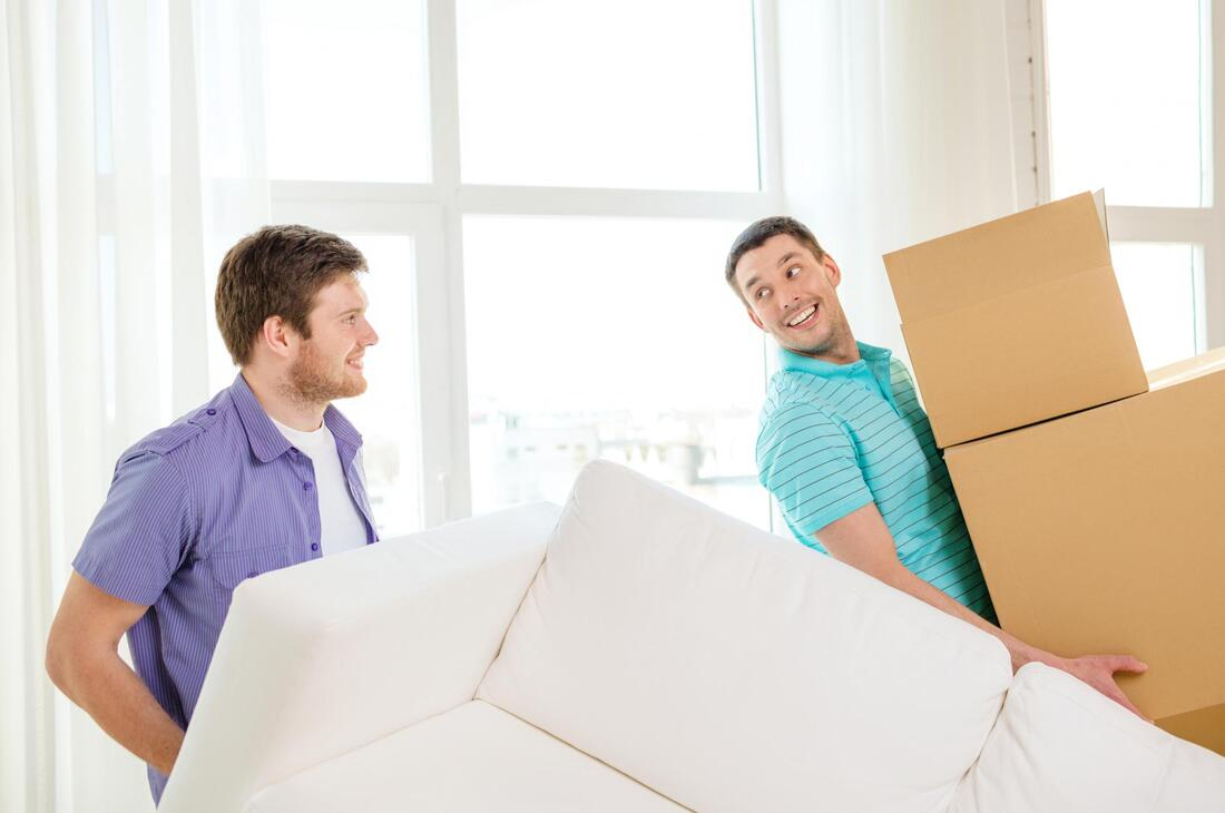 professional moving services expert